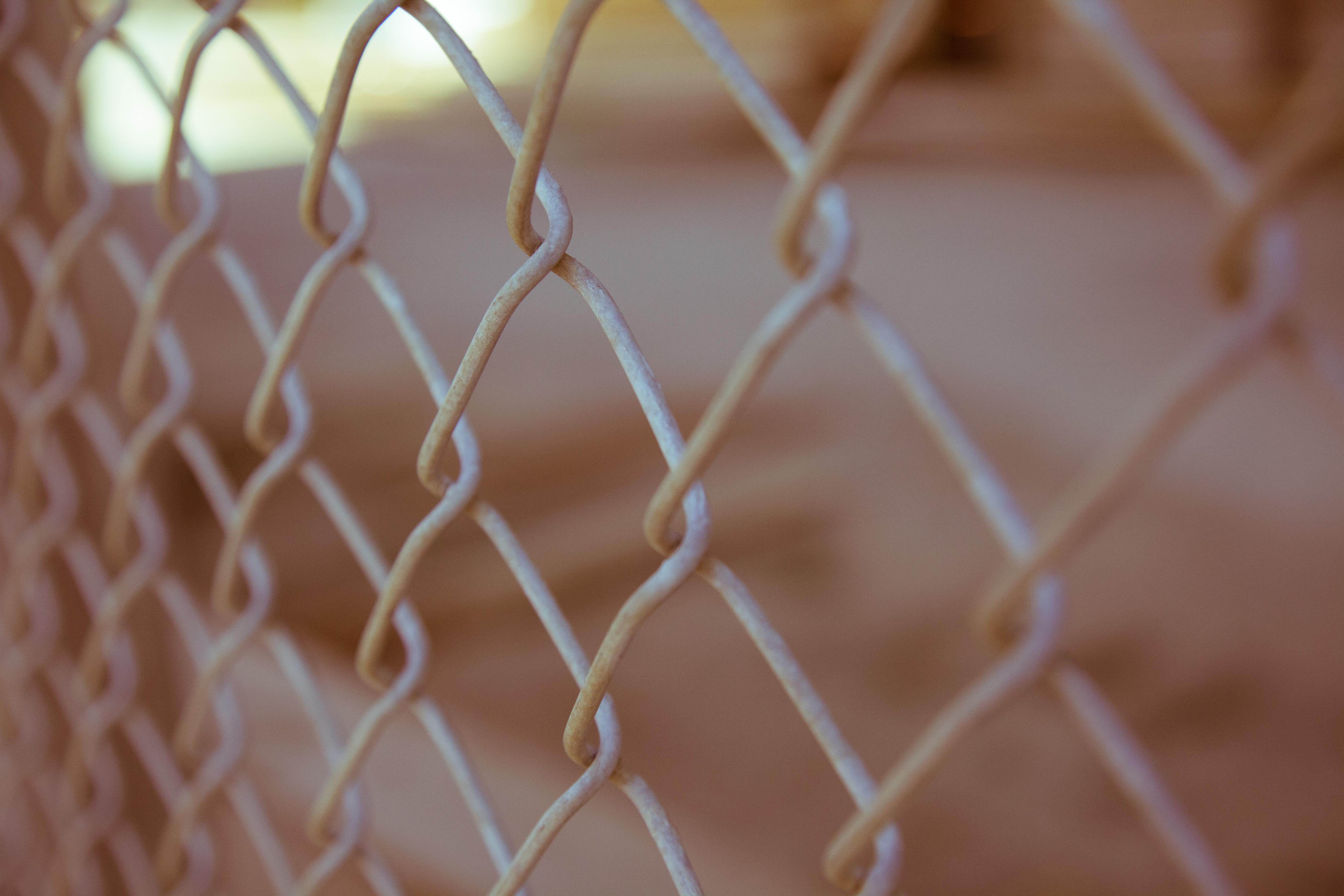fence on unsplsh